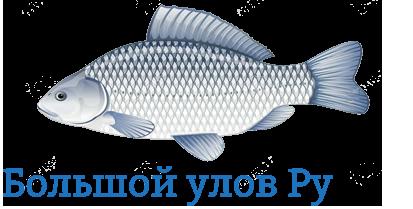 Интернет-магазин ароматизаторов для рыбалки